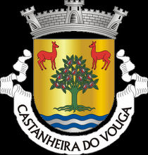 J.F. Castanheira do Vouga