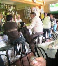 Si una Cabra en el Bar