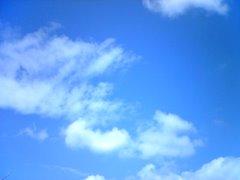 El cel