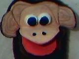 Mono Bebo