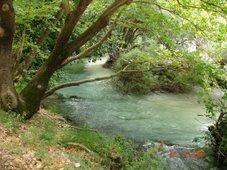 Ποταμός Αχέροντας,Πρέβεζα