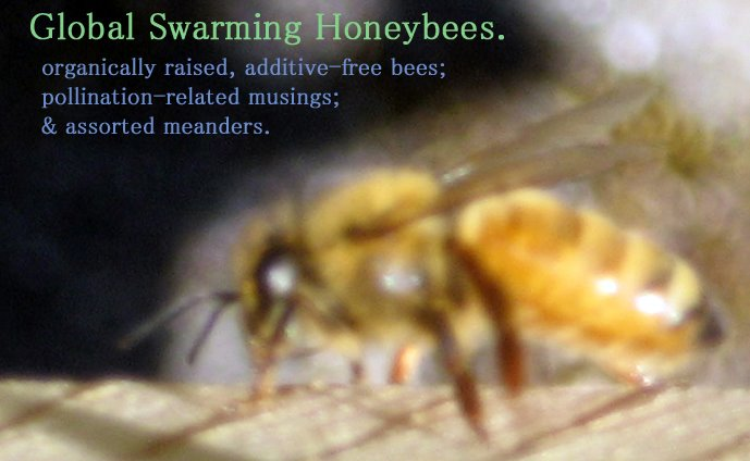 Global Swarming Honeybees