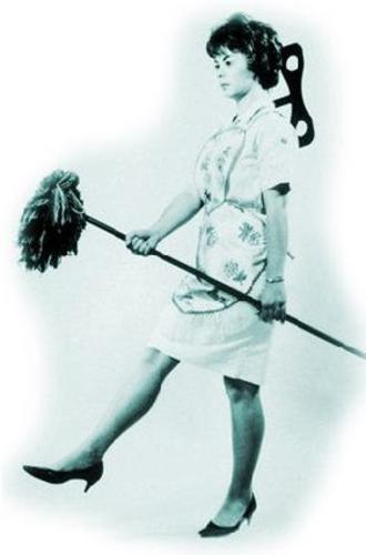 Mujer que se Organiza No Plancha más Camisas...