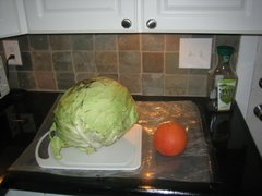 Behold the Cabbage!
