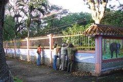 một góc vườn chim Cà Mau