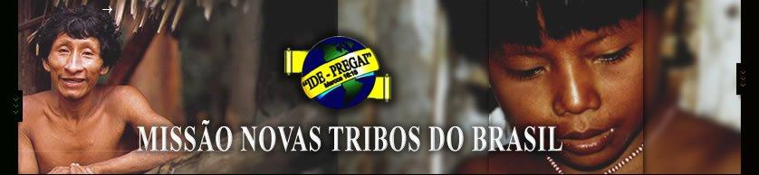 Missão Novas Tribos do Brasil: www.mntb.org.br