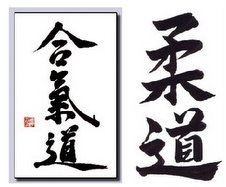 Aikido / Judo