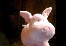 Bouchon le cochon