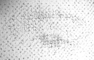 typewriter drawing's detail