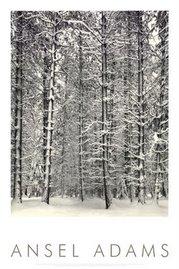 salju putih