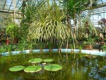o seră din grădina botanică - Cluj Napoca