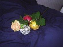 Uma rosa... tres bolas & um casaco