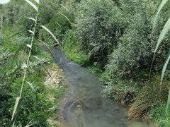 Montesilvano - il fiume