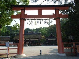 Kamigamo Shrine, Kyoto sightseeing