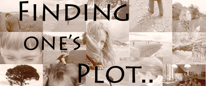 Finding One's Plot