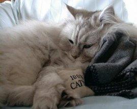 Sleeepingg beuty...zzzzz
