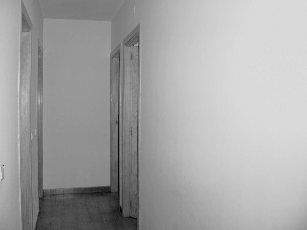 http://photos1.blogger.com/x/blogger2/6689/988370697981249/1600/436356/perspectiva.jpg