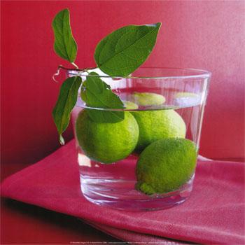 Citrons verts (Amelie Vuillon)
