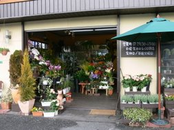 masukawa flower shop