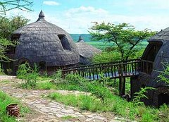 Hoteles en la selva