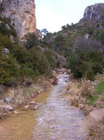 transcurso del rio
