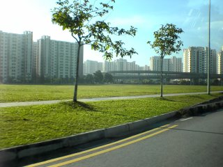Sengkang East Open Field - Egrets Playground