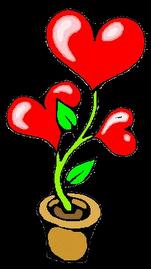 A planta do Amor...-)