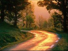 Aléjate del camino.
