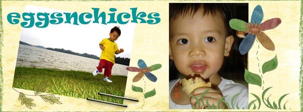 eggsnchicks