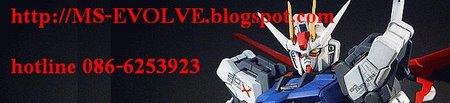 MS-EVOLVE   เราทำโม เราตั้งใจ (อับเดท 24 เมษายน 56)