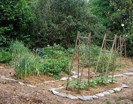 Satellite garden