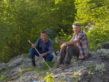 Mirko i Toma