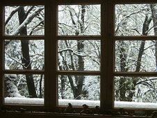 Invierno desde las ventanas del Biota