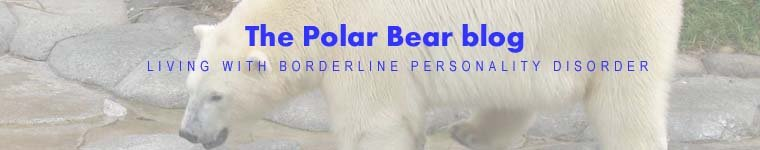 Polar Bear Blog