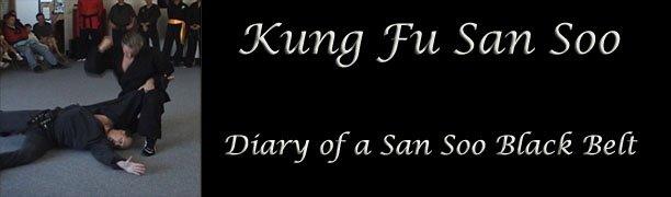 Kung Fu San Soo - Diary of a San Soo Black Belt