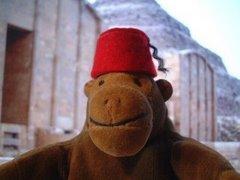 Head Monkey
