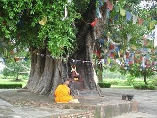 dia 6: Lumbini, lloc on va neixer Buda