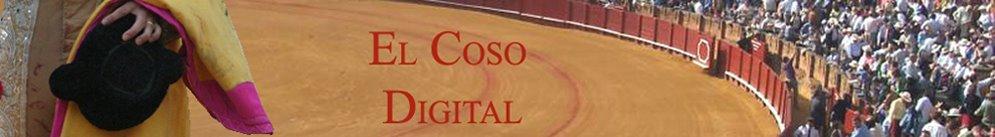 Diccionario del Coso Digital