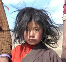 Young Tibetan nomad