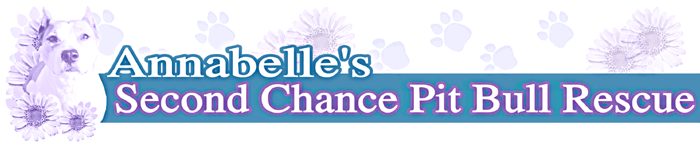 Annabelle's Second Chance Blog
