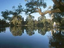 lago - rosedal - buenos aires