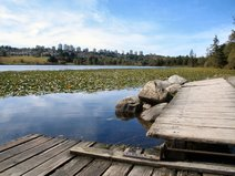 Deer Lake, Burnaby BC