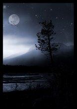 when darkness falls by yalinayak