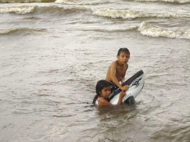 Sharks of Lake Nicaragua