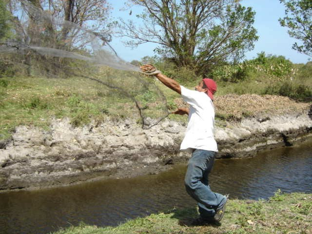 Edwin tossing net