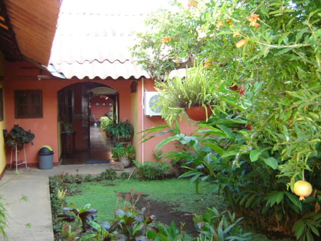 Courtyard of Leon hotel & Pomegranate tree