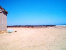 Praia Amélia