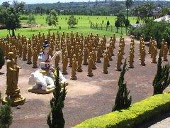 Garden of Buddhas