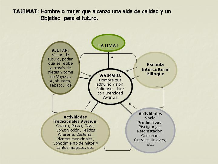 Tajimat / calidad de vida