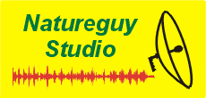 Natureguy Studio and all things Nature